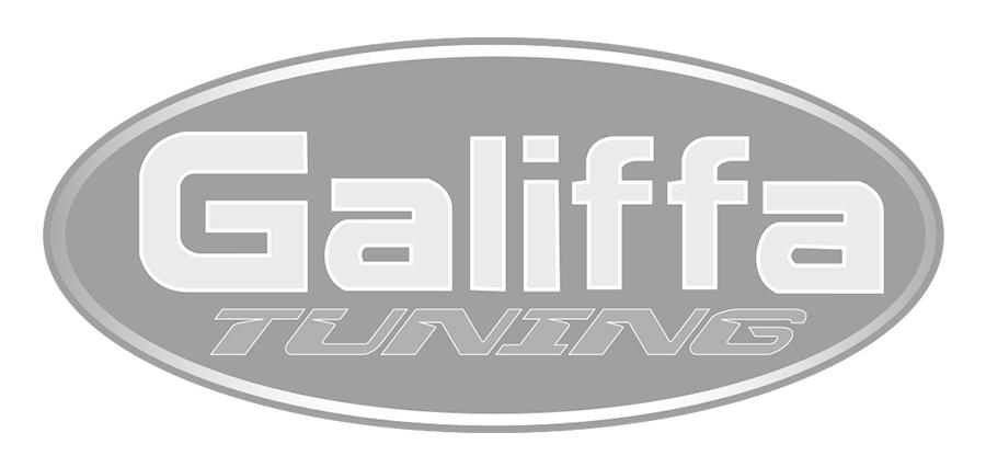 GALIFFA_TUNING_vector